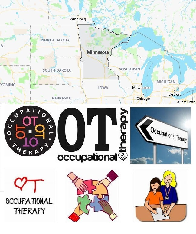 Top Occupational Therapy Graduate Programs in Minnesota