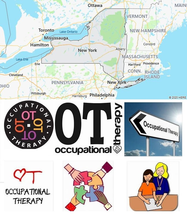Top Occupational Therapy Graduate Programs in New York
