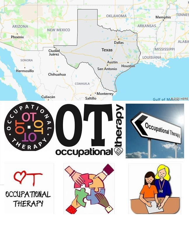 Top Occupational Therapy Graduate Programs in Texas
